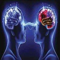 اتصال 3 مغز و امکان به اشتراک گذاری افکار