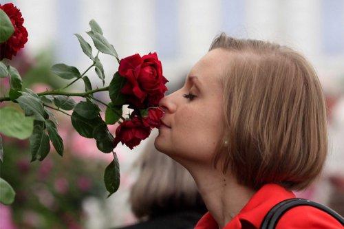 سیستم بویایی و چشایی با یکدیگر در ارتباط هستند