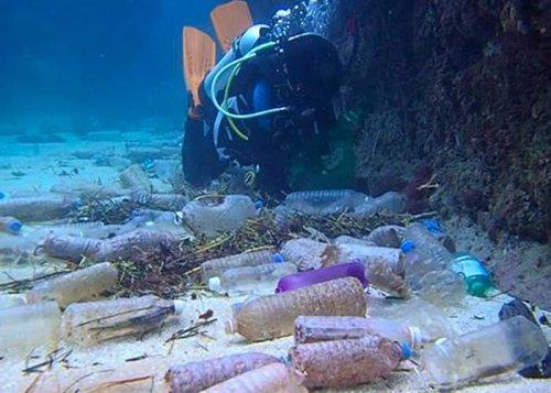 وسعت آلودگی پلاستیکی اعماق اقیانوسها فراتر از تصور است