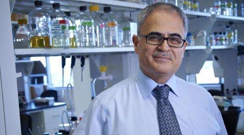 برای نخستین بار؛ پاکسازی ویروس HIV از بدن موش های آلوده