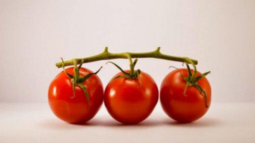 غذاهای حاوی آهن خواص ضد سرطان گوجهفرنگی را از بین میبرند