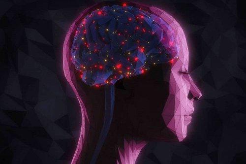 شناسایی نورونهایی در مغز که موجب فراموشکردن خاطرات میشوند