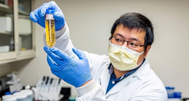 مولکول خنثی کننده ویروس کرونا کشف شد؛ گامی مهم در درمان کرونا